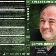 James Gandolfini Collection – Set 6 (2010-2012) R1 Custom Cover
