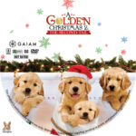 A Golden Christmas 2 (2011) R1 Custom Label