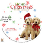 Home for Christmas: A Golden Christmas 3 (2012) R1 Custom Label