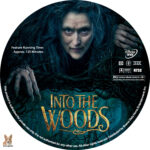 Into the Woods (2014) R1 Custom Labels