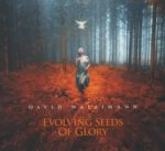 David Wallimann – Evolving Seeds Of Glory (2016) CD Cover