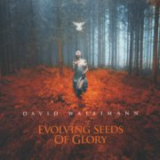 David Wallimann - Evolving Seeds Of Glory (2016) CD Cover