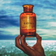 Blackfield – V (2017) CD Cover & Label