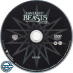 Fantastic Beasts And Where To Find Them (2016) R4 DVD Label