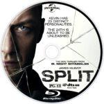Split (2017) R1 Custom Blu-Ray Labels