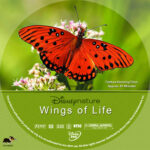 DisneyNature: Wings of Life (2011) R1 Custom DVD Label