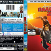 How to Train Your Dragon 2 (2014) R1 Custom 4K UHD Cover