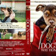 A Dog's Way Home (2019) R1 Custom DVD Cover & label