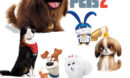 The Secret Life of Pets 2 (2019) R1 Custom DVD Label