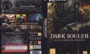 Dark Souls II (2014) PL PC DVD Cover & Labels