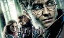 Harry Potter and the Deathly Hallows- Part 1 R1 Custom DVD label