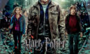 Harry Potter and the Deathly Hallows- Part 2 R1 Custom DVD label