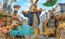 Peter Rabbit 2: The Runaway R1 Custom DVD Label