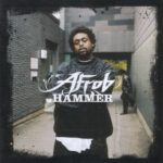 Afrob – Hammer (2010)