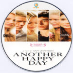 Another Happy Day (2011) R0 Custom DVD Label