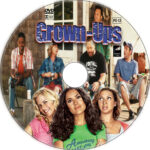 Grown Ups (2010) R1 Custom CD Cover