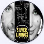 Silver Linings Playbook (2012) R0 Custom DVD Label