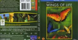 disneynature wings of life