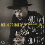 John Primer & The Teardrops – You Can Make It If You Try (2015)