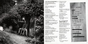 Shaw Blades - Hallucination (Japan) - Booklet (2-6)