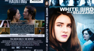 White Bird in a Blizzard dvd cover