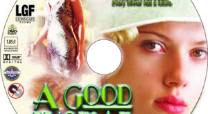 A Good Woman dvd label