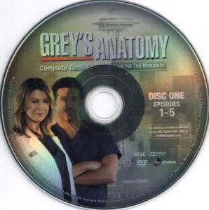 Grey-'s_Anatomy__Season_10_(2014)_R1-cd1