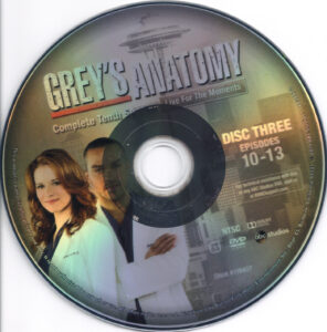 Grey-'s_Anatomy__Season_10_(2014)_R1-cd3