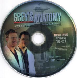 Grey-'s_Anatomy__Season_10_(2014)_R1-cd5