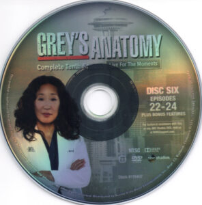 Grey-'s_Anatomy__Season_10_(2014)_R1-cd6