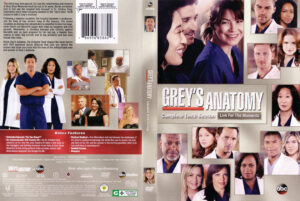 Grey's Anatomy season 10 dvd cover