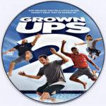 Grown Ups 2 (2013) Custom DVD Label